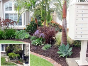 Lake Forest Front Yard Renovation