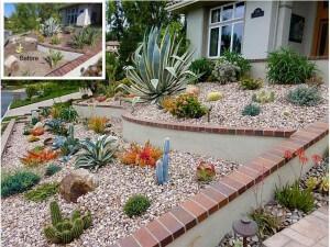 Anaheim Hills Succulent Slope project