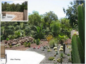 Mission Viejo Landscape Facelift